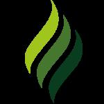 aln-energieeffizienz-heizung-logo-bildmarke-favicon